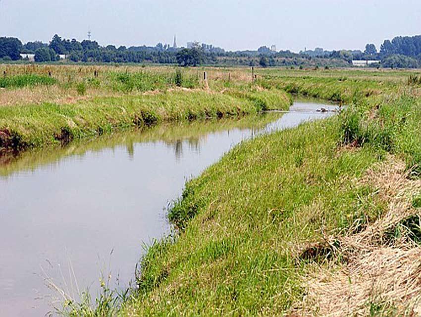 Delme im Bereich des Hochwasserrückhaltebeckens