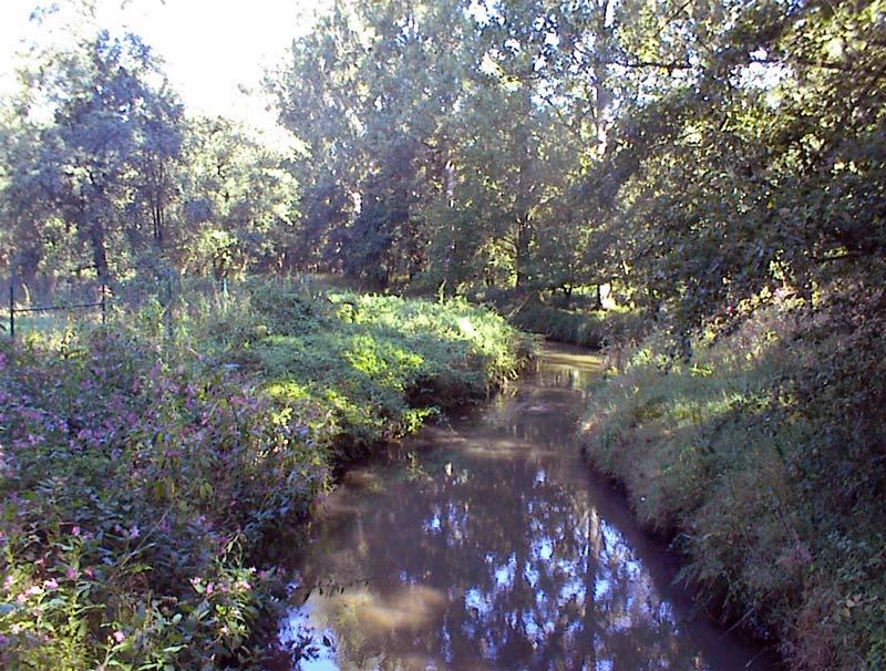 Landschaftspflege Delme Bereich Harpstedt